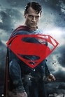 Batman vs Superman Poster Superman rotes Logo